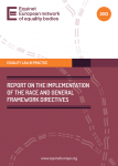 Report on the Implementation of the Race and General Framework Directives (2013)