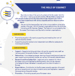 THE ROLE OF EQUINET (Click to enlarge picture)
