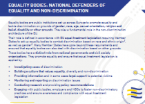 EQUALITY BODIES – NATIONAL DEFENDERS OF EQUALITY AND NON-DISCRIMINATION (Click to enlarge picture)